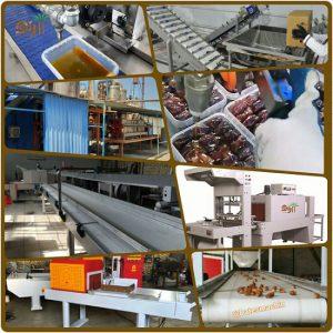 ماشین آلات صنعتی خرما